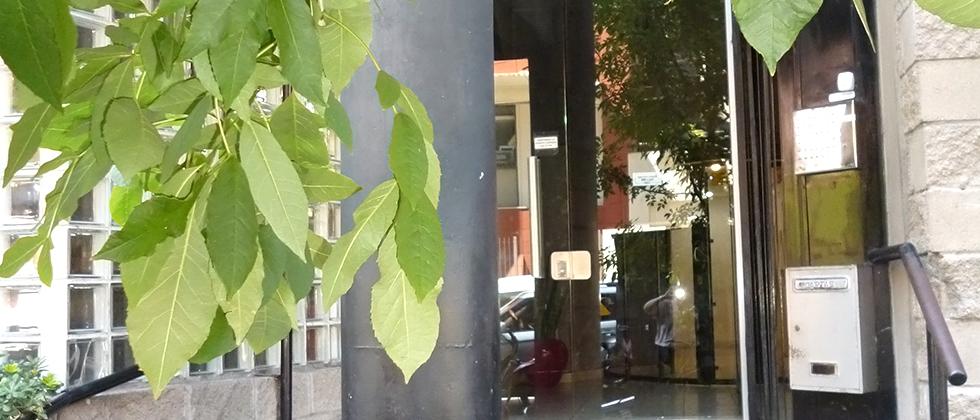 Perla Italiano, Dueño Alquila Departamento en Almagro